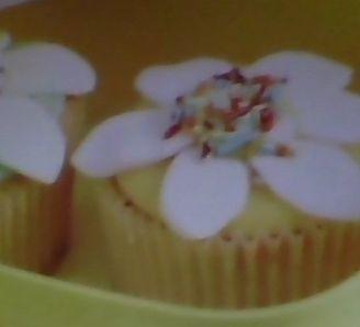 Spring time cupcakes